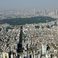 東京のオアシス 明治神宮 キホンの基本(1)