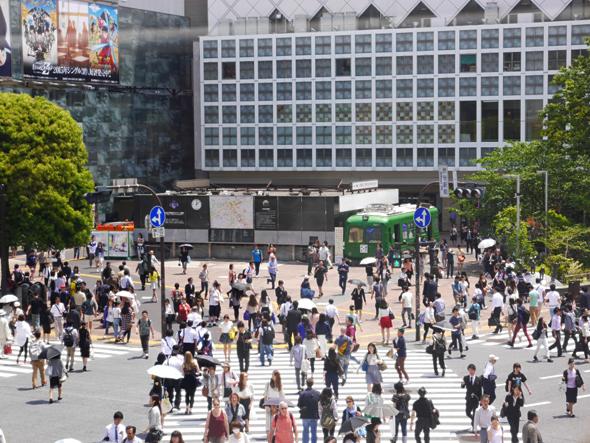 ハチ公前広場に青ガエル観光案内所があります。