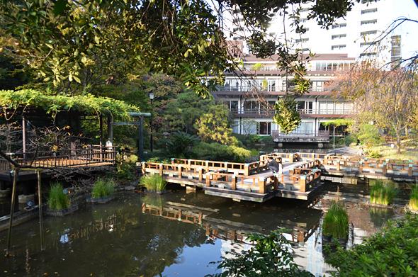 東郷神社の神池